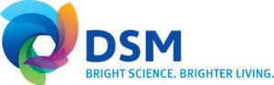 DSM_Master Logo